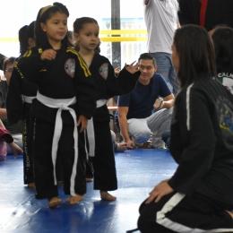 Hapkido-Osasco-Bilingue